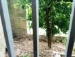 Abitazione indipendente + giardinetto + garage + terrazzino AFFARE!!