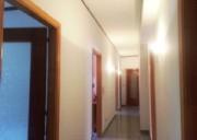 Ampio e luminoso 8 locali con vano box/ufficio-zona servita