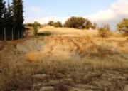 Terreno agricolo 4290 mq zona Contrada TUROLIFI/BORGO TUROLIFI
