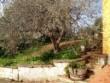 Prestigiosa Villa 3 livelli + terreno in zona pregiata
