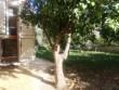 Villa bifamiliare con ampio giardino a due passi dalla città