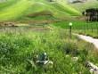 Immersa nel verde-totale relax e serenità villetta c/da fontanelle