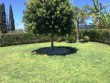 Casa vacanze TOP!! a campofelice di Roccella con giardino e veranda